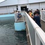 2021年波崎フッチ修徳夏合宿U-7.8_210804_87