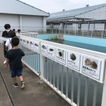 2021年波崎フッチ修徳夏合宿U-7.8_210804_85